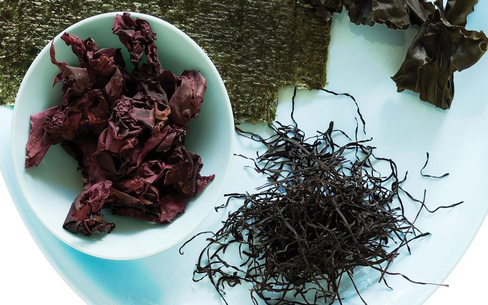 Arame-Seaweed