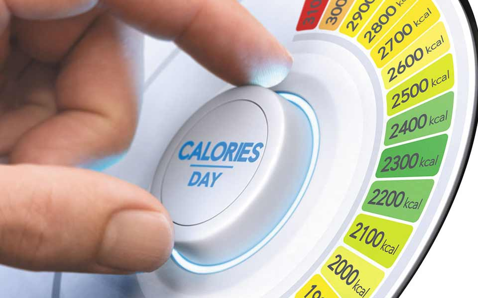 Calorie Need per day