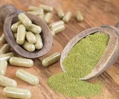 Moringa-pills