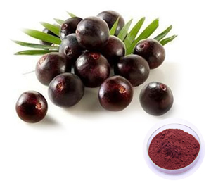 acai-berry-extract