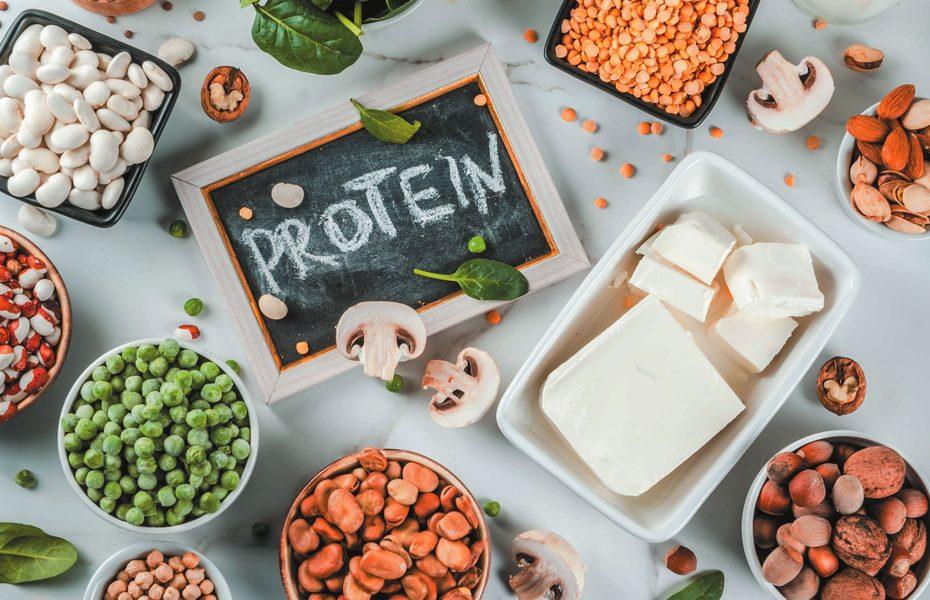 protein-needs-diet