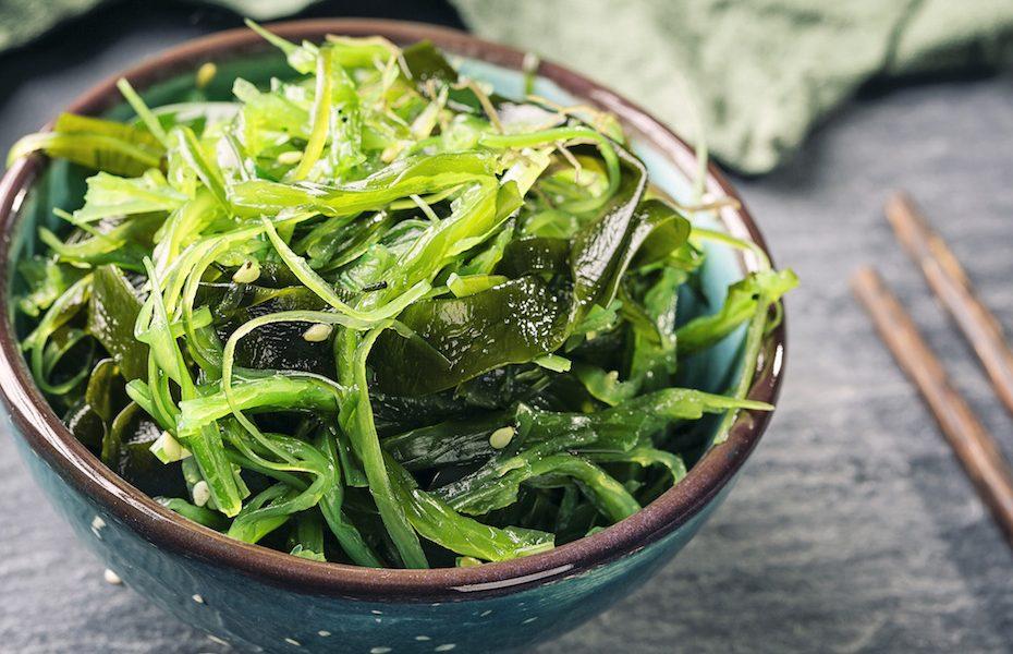 wakame-seaweed-kelp